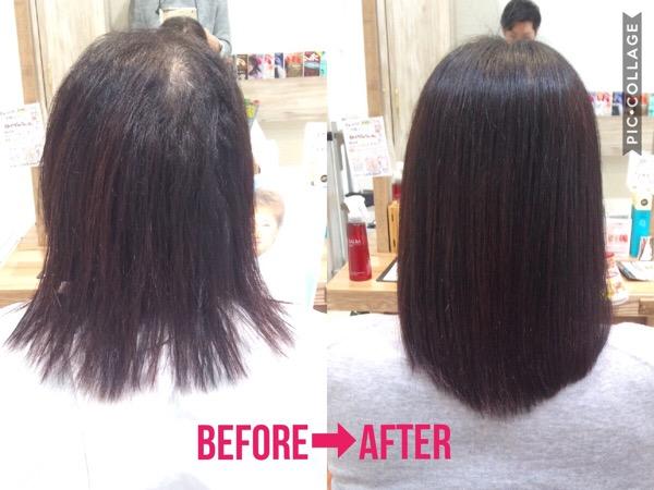 半年間、定期的な髪質改善を繰り返した髪の変化