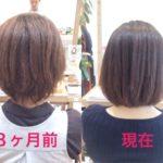 8ヶ月間、髪質改善を頑張った髪の変化