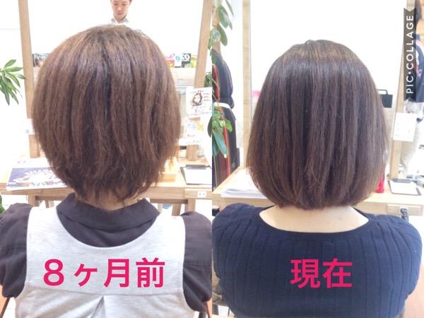 髪質改善と縮毛矯正を8ヶ月間頑張った髪の変化