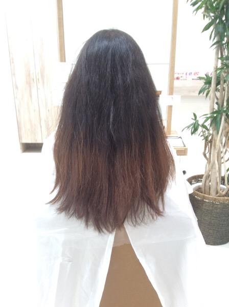 硬くチリチリ細かくねじれた捻転毛というくせ毛の縮毛矯正