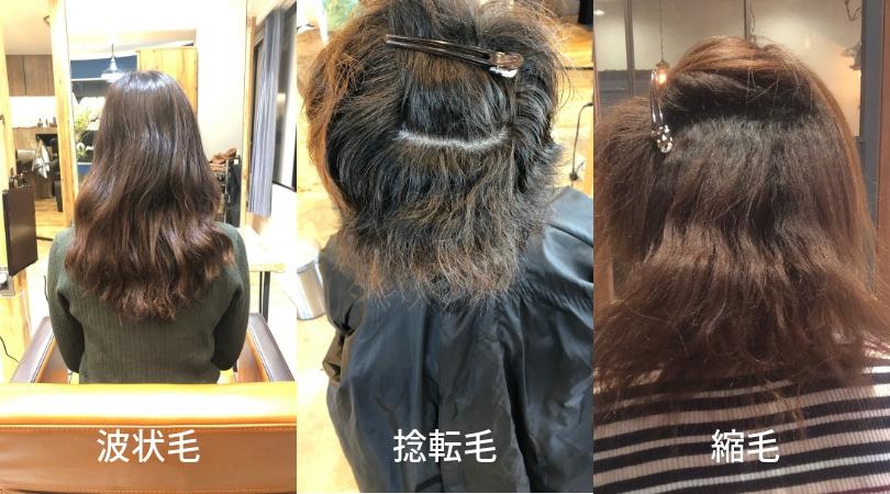 波状毛・捻転毛・縮毛(くせ毛の種類)